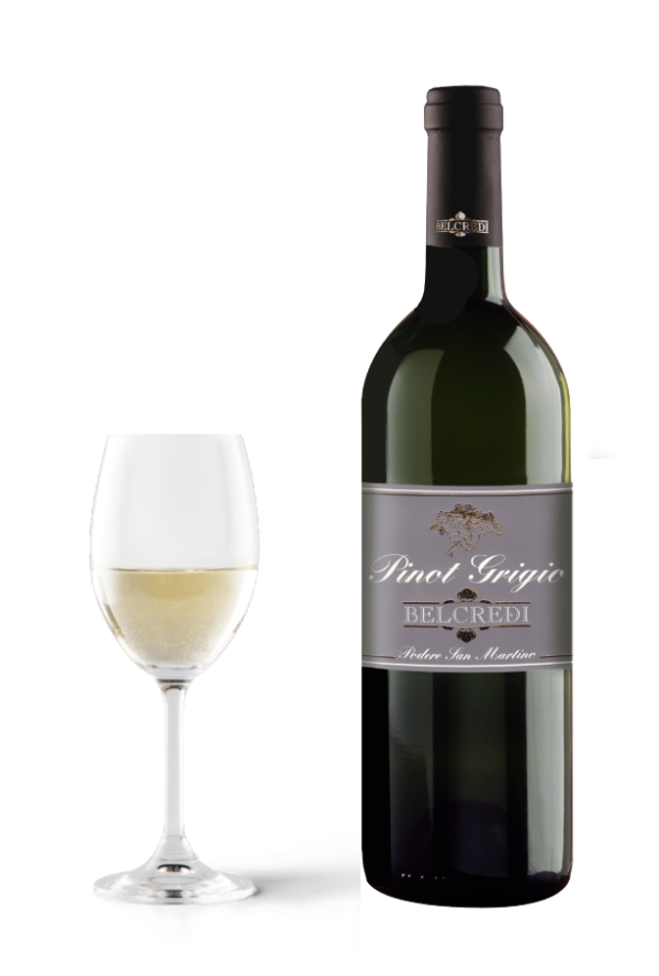 Pinot Grigio Cantina Belcredi Oltrepò Pavese Podere San Martino